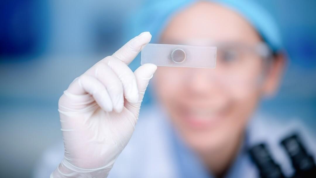Usos y aplicaciones de la Biotecnología