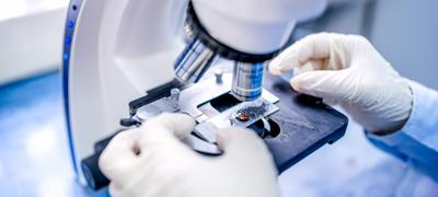 Licenciatura en Biotecnología